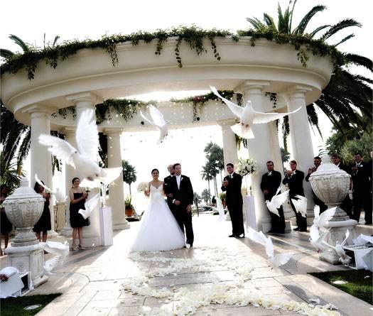 фото запуска голубей на свадьбе