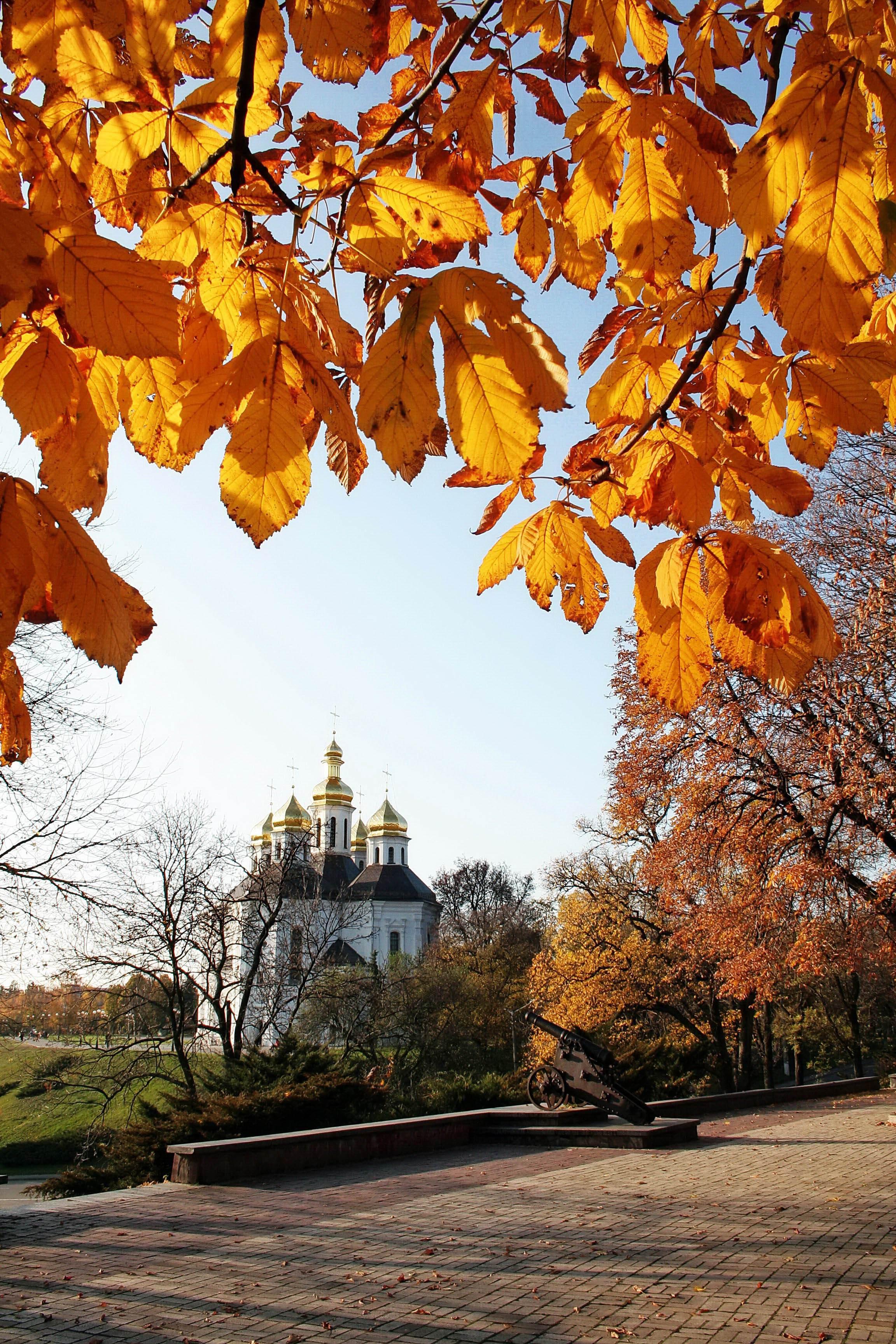 Екатерининская церковь в Чернигове осенью