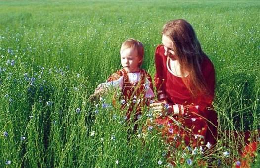 цветы в поле