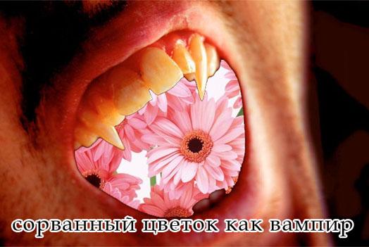 Цветок вампир